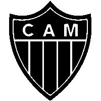 copa sul americana 2019 brasil