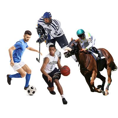 trader esportivo é seguro